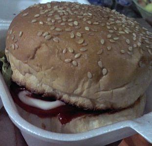 burger ari (2)