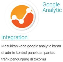 Jejualan-google analytic