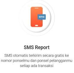 sms report