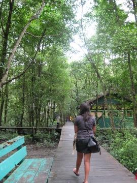 Hutan Kota di TarakanIMG_8163