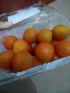 Tomat Cherry yang  Segar