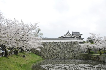 Reruntuhan Kastil (sumber: https://www.japanhoppers.co.id/kyushu_okinawa/fukuoka/kanko/2225/)
