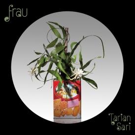 Frau-Tarian-Sari-Artwork