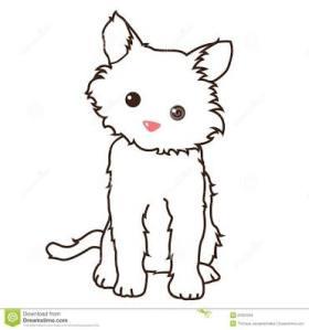 Kucing kecil