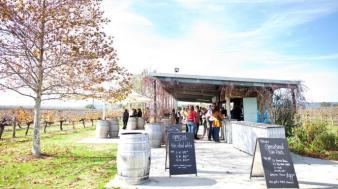 Swan Valley bukan hanya kebuh anggur (gamabr: http://www.australia.com/id-id/places/perth/swan-valley.html)