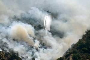 130910_kebakaran-hutan-2