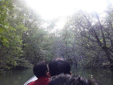 sungai belanda